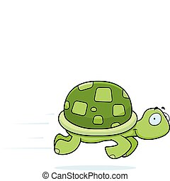 tortue, courant