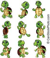 tortue, ensemble, dessin animé, collection, heureux