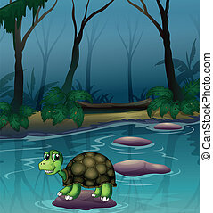 tortue, lac