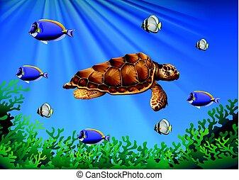 tortue, sous-marin, fish, mer, natation