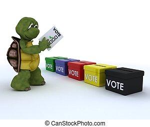 tortuga, bastidor, un, voto, en, elección