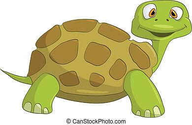 tortuga, carácter, caricatura