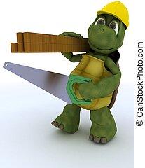 tortuga, carpintero, contratista