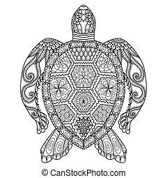 tortuga, colorido, página