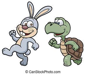 tortuga, conejo