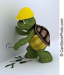 tortuga, eléctrico, contratista