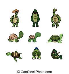 tortuga, ilustración, diseño