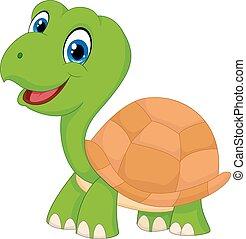 tortuga, lindo, verde, caricatura