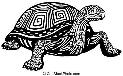 tortuga, negro, blanco