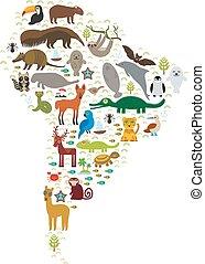 tortuga, perezoso, papagallo, color azul - pagar, delfín, venado, cocodrilo, oso hormiguero, sello, lama, mono, armadillo, lagarto, booby, manatee, capybara., tucán, piel, américa, pingüino, murciélago, jaguar, maned, vector, lobo, mapache, boa, sur