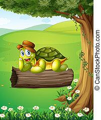 tortuga, relajante, debajo, árbol, sobre, tronco
