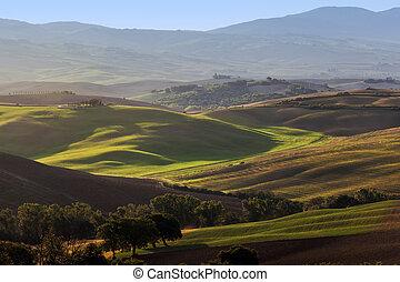 toscana, landschaftsbild, an, sunrise., tuscan, bauernhofhaus, weinberg, grün, hills.