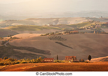 toscana, landschaftsbild, an, sunrise., tuscan, bauernhofhaus, weinberg, hills.