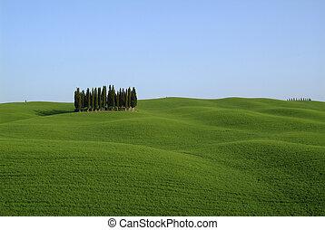 toscana, landschaftsbild