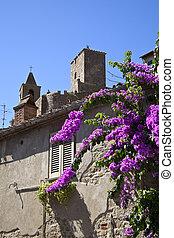 toscana, mittelalterlich, kirche