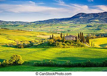 toscana, ocaso, paisaje