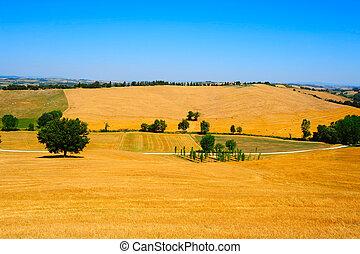 toscana, paisaje