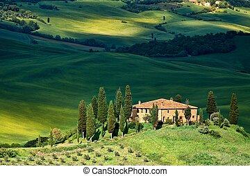 toscana, paisaje, -, belvedere