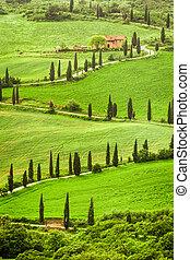 toscana, wicklung, agritourism, italien, hügel, straße