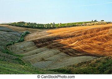 toscane, paysage, vallonné