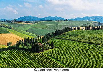 toscano, cortijo, italia, típico