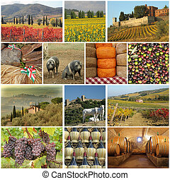 toscano, industria alimentare, collage