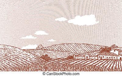 toscano, paisaje, escena