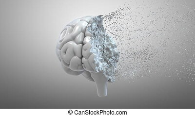 Total disintegration of a human brain 3D