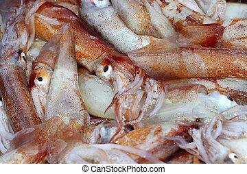 totena mediterranean squid seafood market background pattern