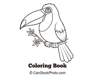 Toucan bird cartoon coloring book vector