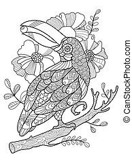 Toucan bird coloring book for adults vector