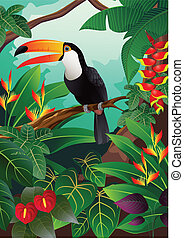 Toucan bird - Vector illustration of toucan bird