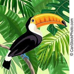 toucan bird in the rainforest. color illustration