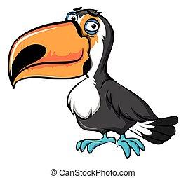 Toucan bird with sad face
