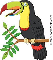 toucan cartoon sitting
