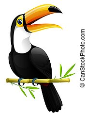 colorful toucan sitting on a bamboo branch , isolated on white