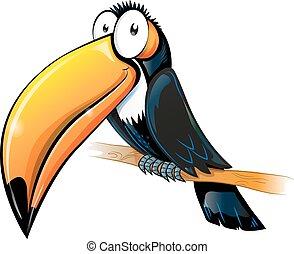 toucan, dessin animé, amusement