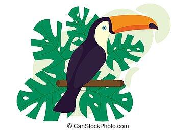 Toucan, exotic birds, monstera, bird of paradise.