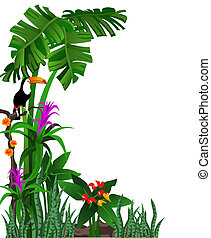 Toucan - Green background illustration of tropical forest...
