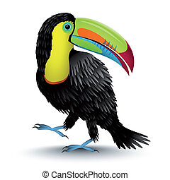 Toucan - Vector illustration of a toucan