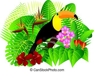 Toucan in Tropical Forest with Foliage and Flowers Color Illustration