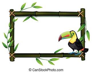 Toucan on bamboo border