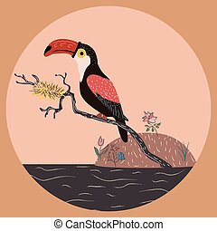 Toucan sitting on a branch with nest over the water.