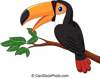 toucan, spotprent, boompje, branc, vogel