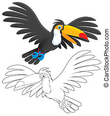 Toucan flying, color and black-and-white outline...