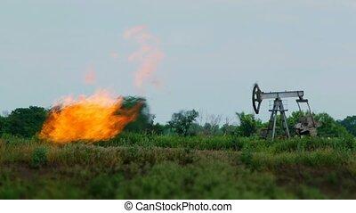 tour forage pétrole, dans, les, nature