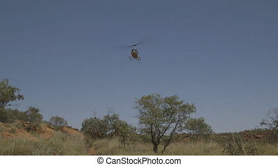 Tour helicopter approaching to land, Outback, NT - Close-up...