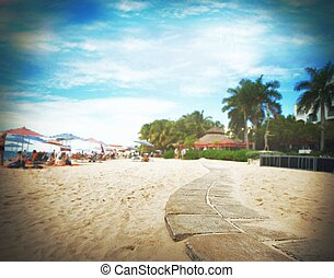 Tourism in a  tropical beach