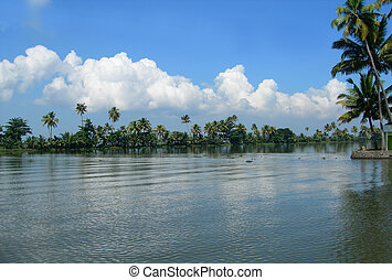 Tourism in Kerala India - Palm trees and lush vegetation on ...