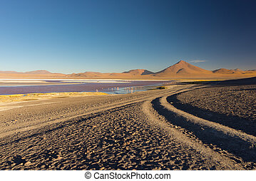 "Tourist at ""Laguna Colorada"" on the Bolivian Andes"